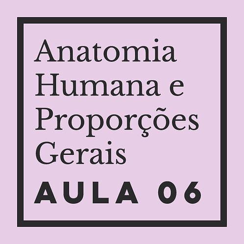 AULA 06: Rosto - estrutura óssea & planos geométricos