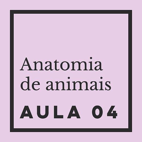 AULA 04: Aves - análise geral