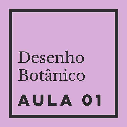 AULA 01: Folhas - Morfologia básica