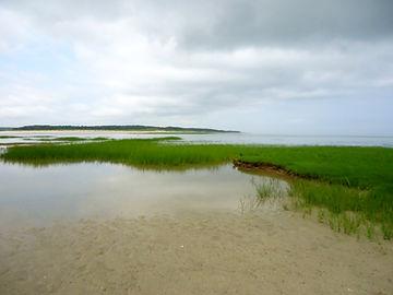 Brewster Flats, Cape Cod MA
