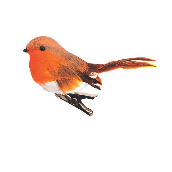 Clip-on Robin