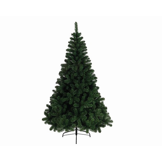 Imperial Pine Tree