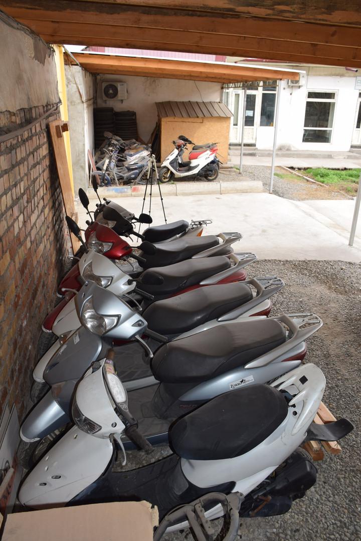 Honda Lead rental fleet