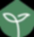 logo.green (1).png