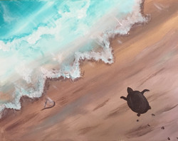 New Turtle Beach
