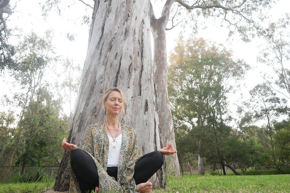 Meditation under tree.jpeg