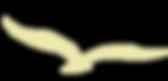 Cool Coastal Huts Yellow Bird Logo