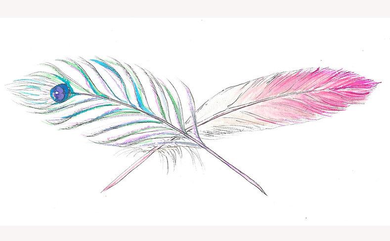 Peacocks & Flamingoes Logo retouched.jpg