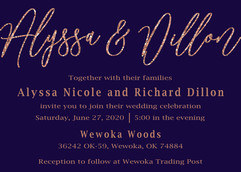Rose Gold/Navy Wedding