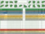 Scorecard grid.jpg