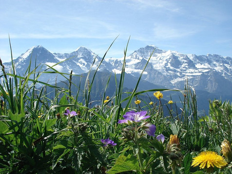Jungfrau_Ausflug_2012_00018.jpg