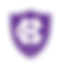 holy cross logo.png