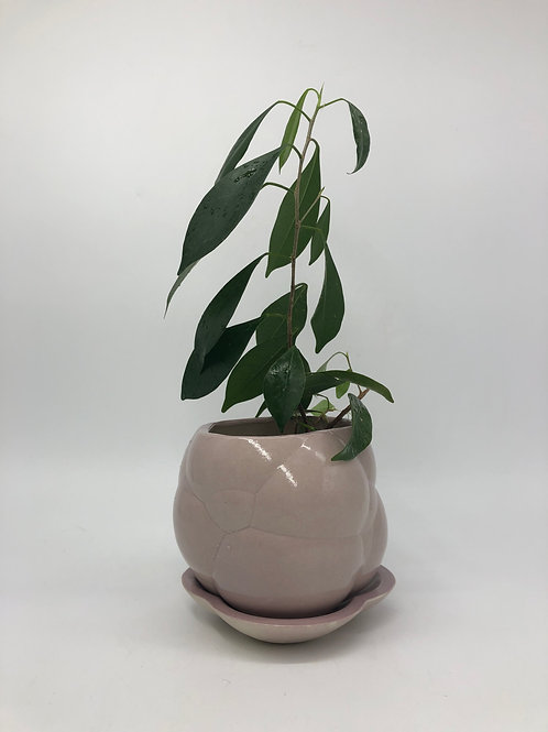 Hoggle Planter in Lilac