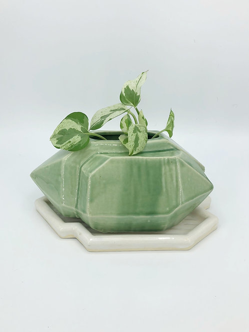 Aughra Planter in True Celadon with a White Drip Tray