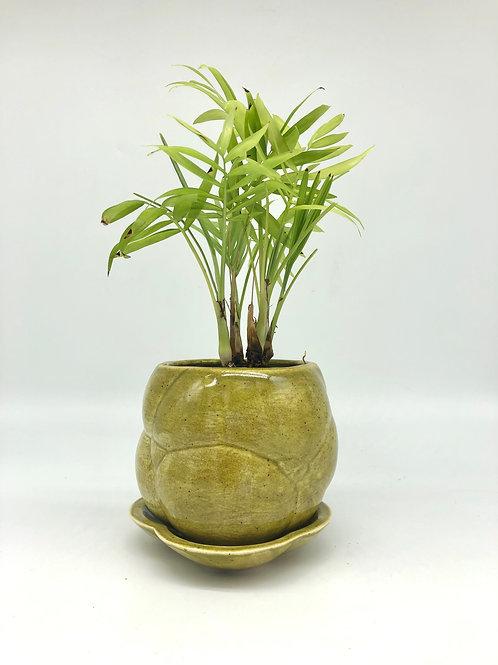 Hoggle Planter in Light Speckle Olive