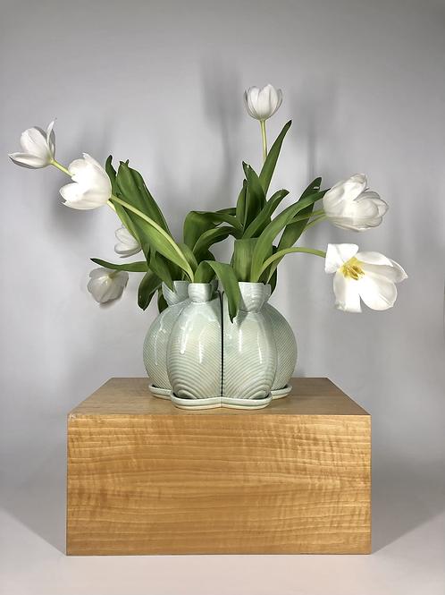 Doozer Tulipiere in Aqua