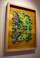 Jenny-Hutchinson-Art_Reflection_gallery-