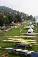 Neckarwiese im Zeichen der Regatta