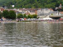 Gewimmel an der Neckarwiese
