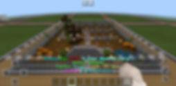 Screenshot_20191031-175719_Minecraft.jpg