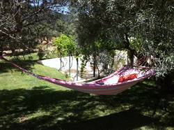 Spot for lazy afternoons.