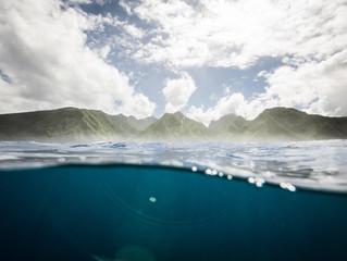 Tahiti Sweeties