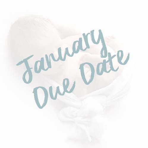 My Baby's First Year | January