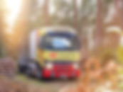 RX66 BVG woods.jpg