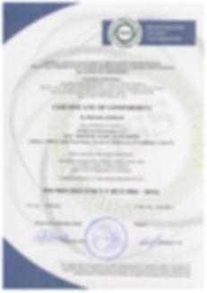ISO MSS (ENG).jpg