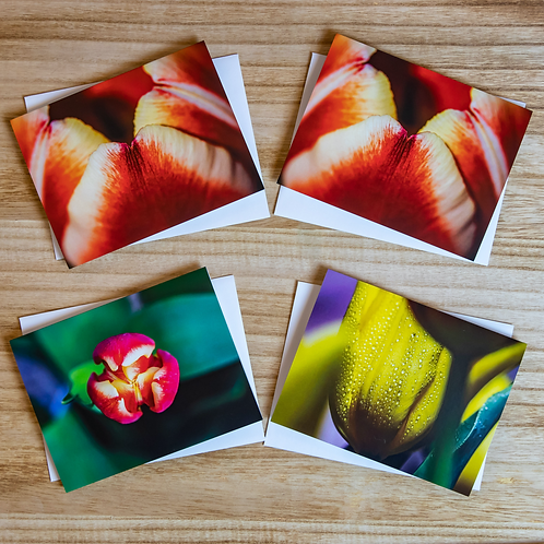 Tulip Note Card Set