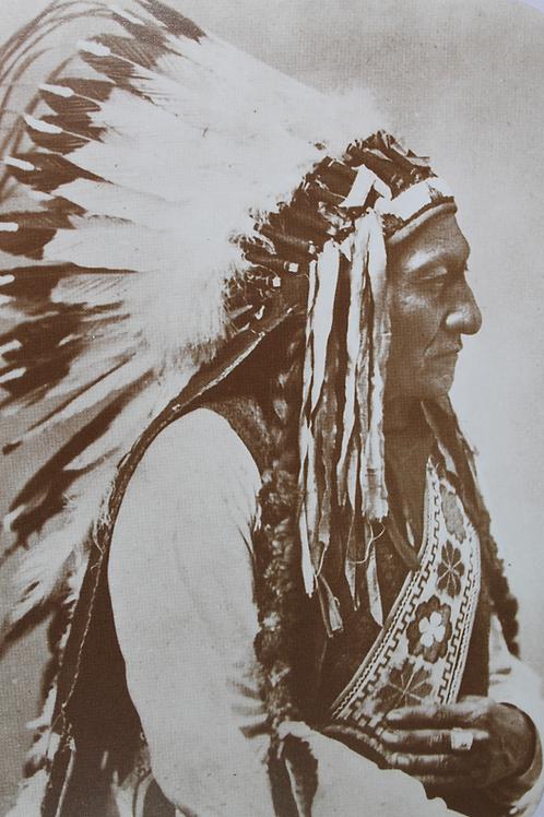 Chief Sitting Bull in full headdress