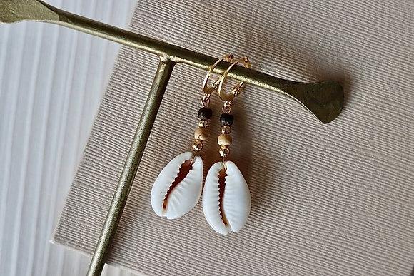 Ohrringe mit Kauri Muschen und Kokosnussperlen