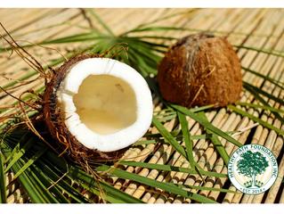 How Dare They Attack Coconut Oil!!