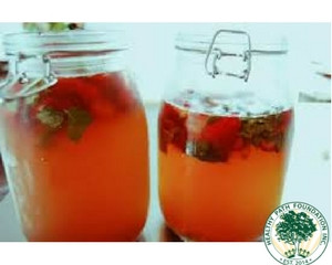 How To Brew Your Own Kombucha!
