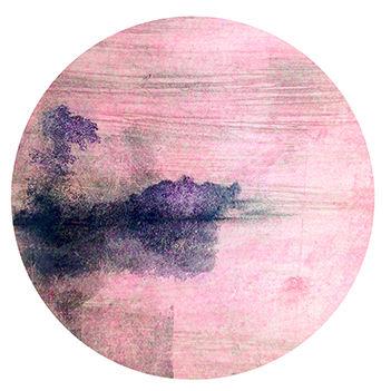 mist (14).JPG