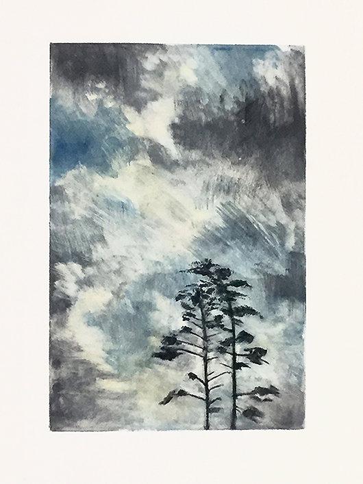 mist (33).JPG