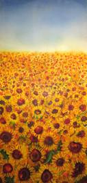 Sunflower commission