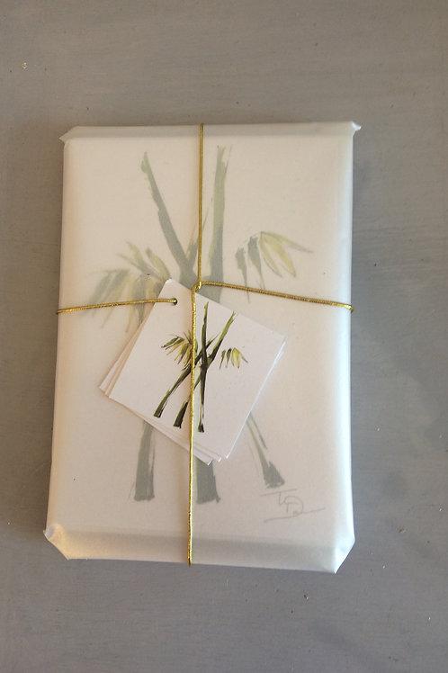 Bamboo notecards