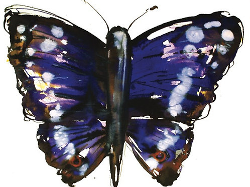 Glittered Butterfly greeting card