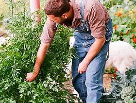 agriculture.webp