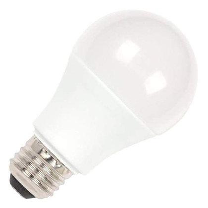 Practical LED Bulb Rental