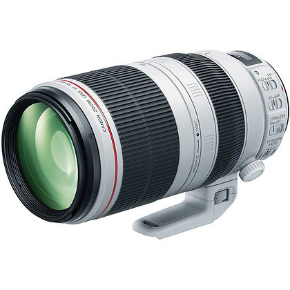 Canon 100-400mm F4.5-5.6 L IS Lens EF Rental