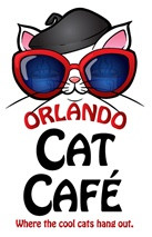Healthy Pet Coach Cat Nutrition Seminar At Orlando Cat Cafe on January 19, 2017