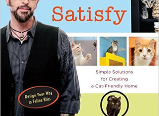 Ready To Catify Your Home?