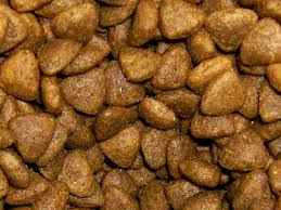 Why Dry Food Is Not A Healthy Diet For Cats And Dogs