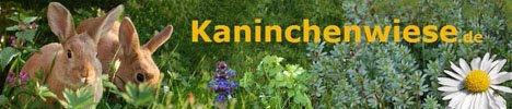 kaninchenwiese1.jpg
