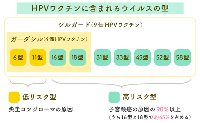 HPVワクチンに含まれるウイルスの型.png