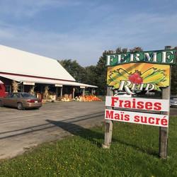 Kiosque Iberville