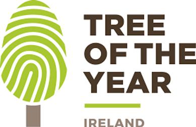 Ireland logo green