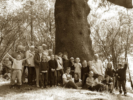 The Company of Trees - An inspiring intergenerational project!